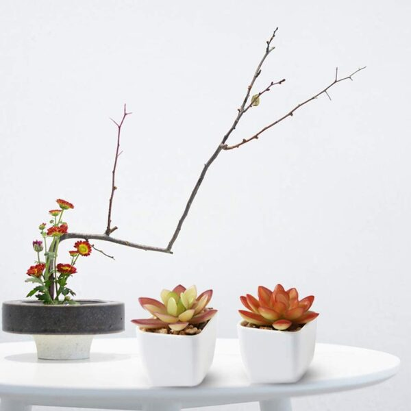 CQURE Fake Succulents Plants, Artificial Plants Fake Plants Potted in Plastic Small Pots Decor for Home and Office(4 PCS)