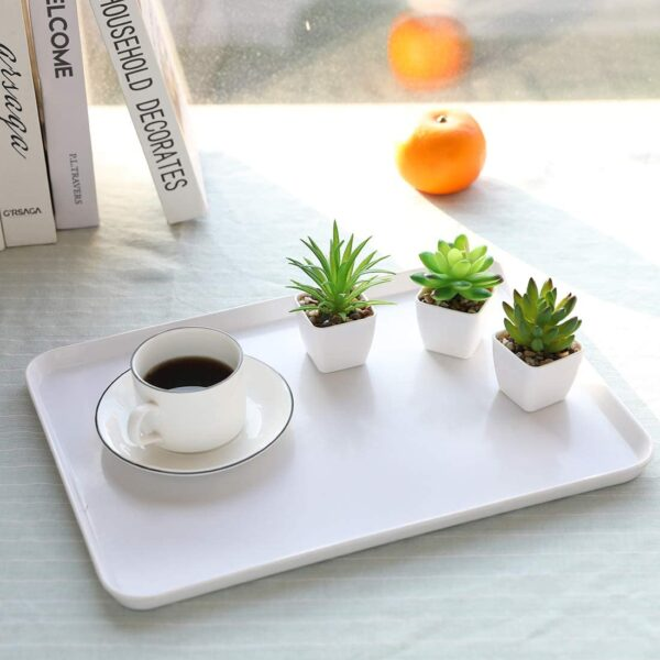 Nubry Mini Fake Succulent Plants Artificial Plastic Succulents Potted Faux Assorted Plants for Home Office Table Decoration, Set of 6