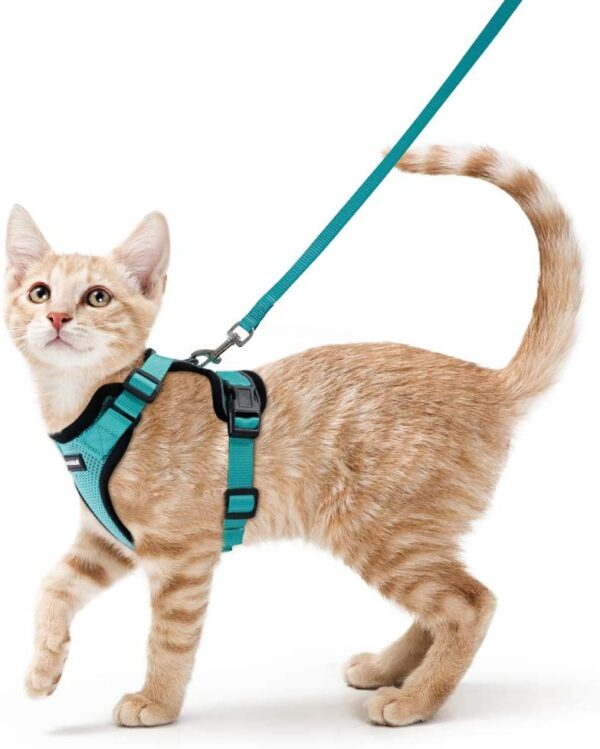 rabbitgoo Cat Harness and Leash Set for Walking Escape Proof with Leash - Adjustable Soft Vest Harnesses for Small Medium Cats, Cat Leash Harness with Reflective Strips, Green, XS