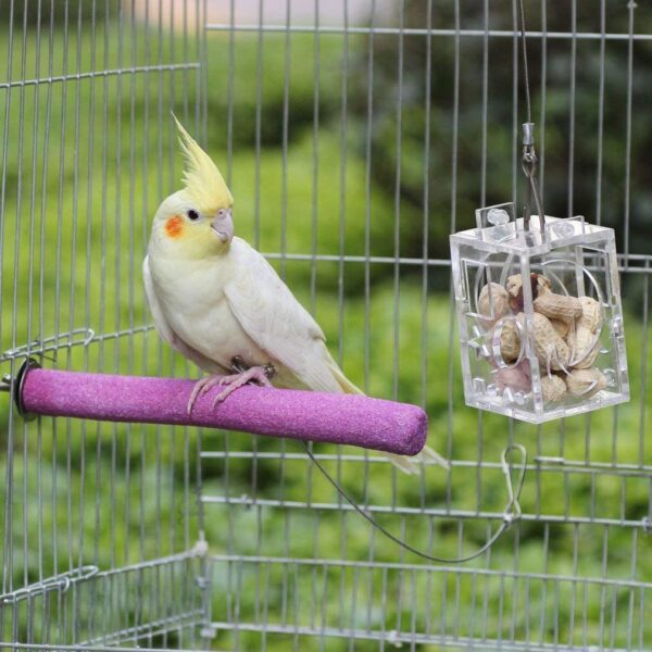 Legendog Parrot Perches, 5PCS Bird Perches Budgie Perch Cockatiel Perch Budgie Perches for Cage Training Interactive Bird Cage Perches