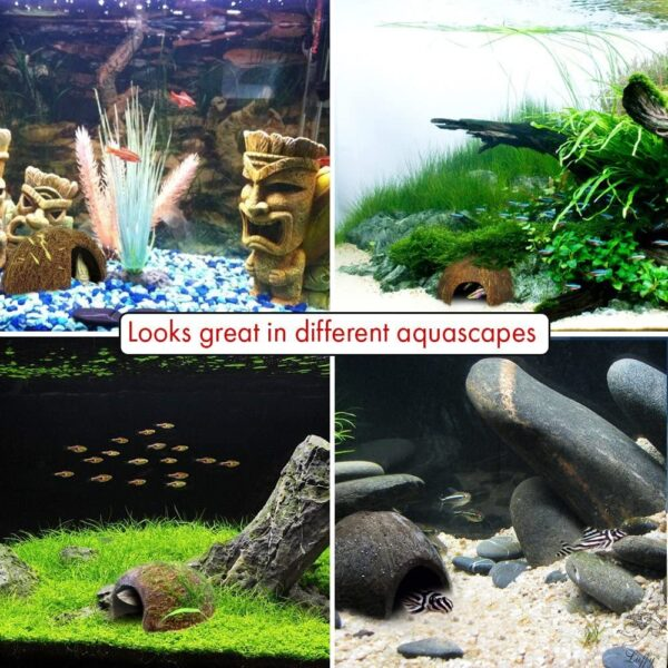 Coco Hut for Aquatic Pets, Made of Raw Coconut, Smooth Edges, Comfortable & Cute Hideout, Snag-Free Surface to Keep Fish, Snail and other pets Safe, Perfect for Breeding